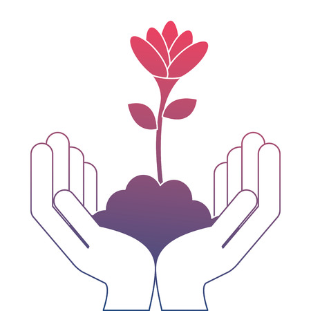 Hands with beautiful flower in grown vector illustration design