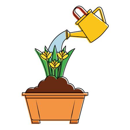 Beautiful flowers in a pot
