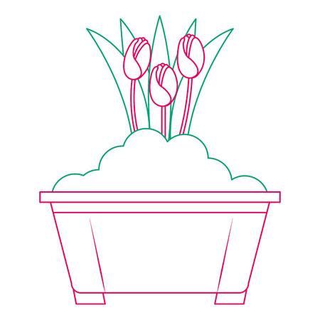 ポットベクトルイラストデザインで栽培された美しいバラ