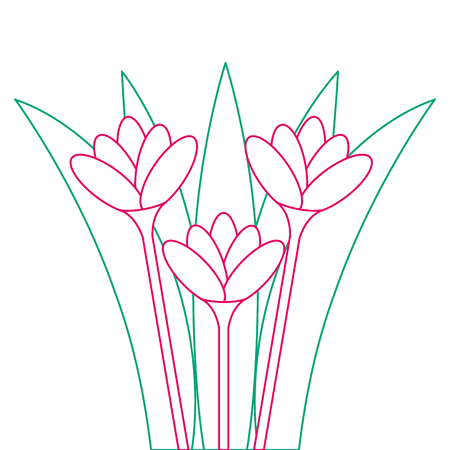 Beautiful flowers, cultivated icon, vector illustration design