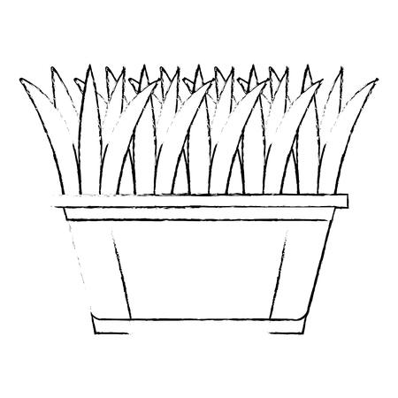 Gras in vector de illustratieontwerp van het pottenpictogram Stockfoto - 91902206