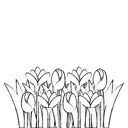 beautiful flowers cultivated icon vector illustration design Ilustração