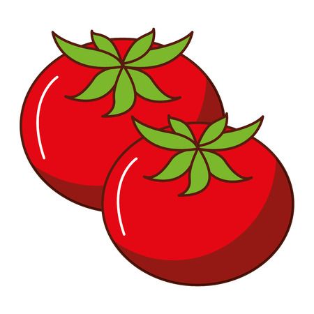 Fresh tomatoes isolated icon vector illustration design