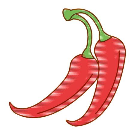 PIcé chili légume icône vector illustration design Banque d'images - 91907435