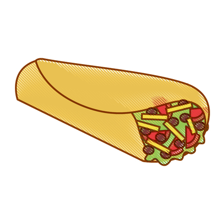 delicious mexican food burrito vector illustration design