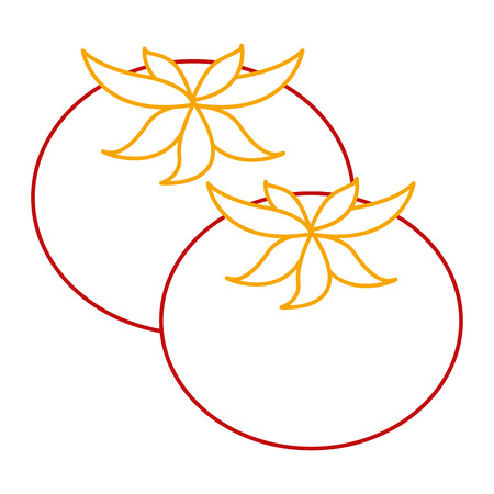 fresh tomatoes isolated icon vector illustration design