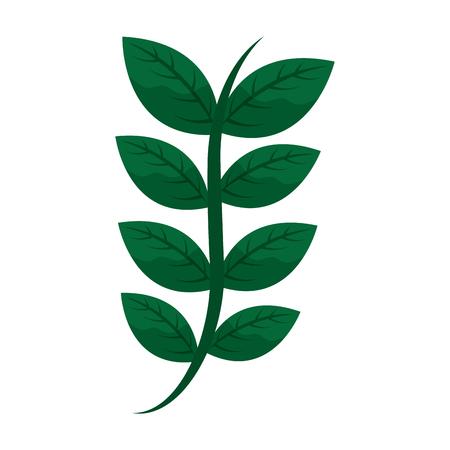ステムデリケートなアイコン画像ベクトルイラストデザインの葉