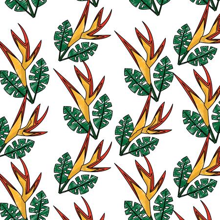 Pattern of bird of paradise flower Illustration
