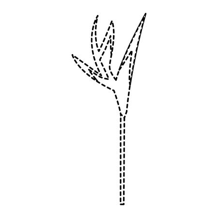 Pájaro de la flor del paraíso ilustración vectorial Foto de archivo - 92127285