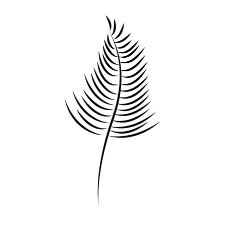 Single leaf icon image vector illustration design