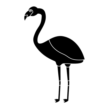 Flamingo bird tropical icon image vector illustration design