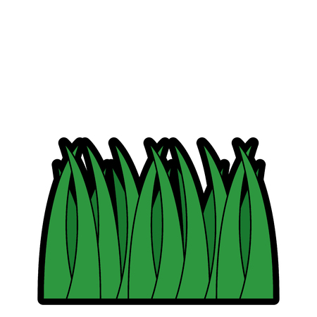 Grass natural botanical foliage icon.