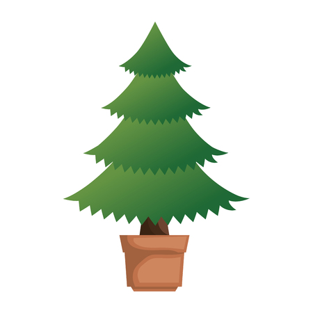 Pine tree plant in pot illustration design. Stock fotó - 92242005