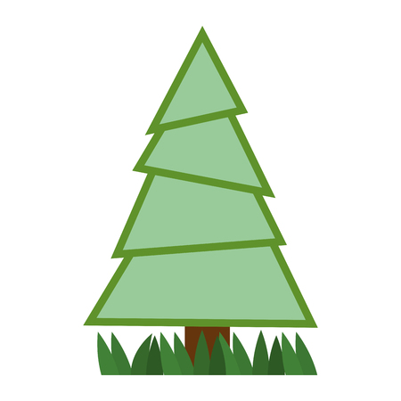 Pine tree plant with grass vector illustration design Stock fotó - 92199824