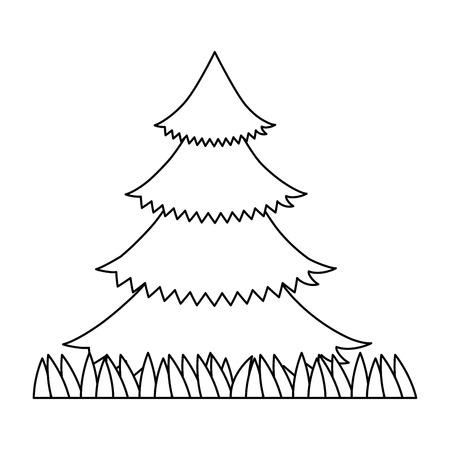 Pine tree plant with grass  illustration design.