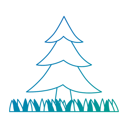 pine tree plant with grass vector illustration design Illustration