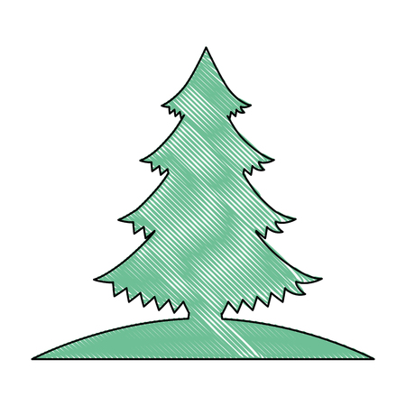 pine tree plant icon vector illustration design 일러스트