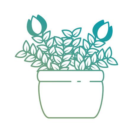 roses house plant in pot vector illustration design