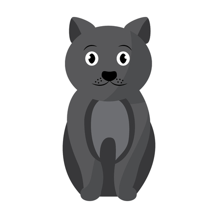 cat sitting pet animal domestic vector illustration