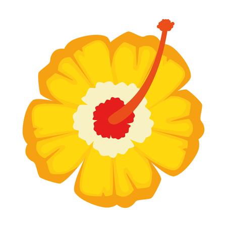 이국적인 열 대 꽃 벡터 일러스트 디자인 스톡 콘텐츠 - 92281956