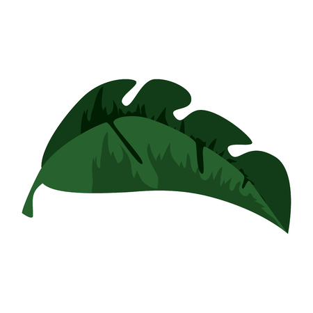 tropical palm leaf icon vector illustration design