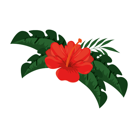 exotic and tropical flower vector illustration design Stock Vector - 92338794