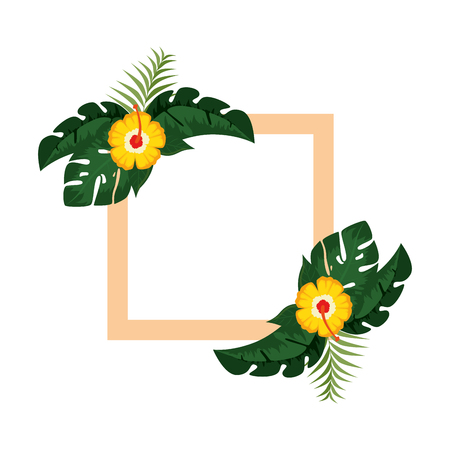 exotic and tropical flower frame vector illustration design