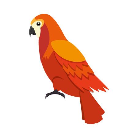 cockatoo exotic bird icon vector illustration design Stok Fotoğraf - 92338812