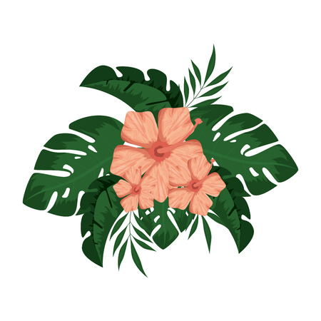 Exotic and tropical flower vector illustration design.
