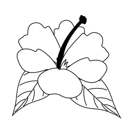 이국적인 열 대 꽃 벡터 일러스트 레이 션 디자인. 스톡 콘텐츠 - 92287128
