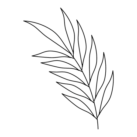 Palm leaf icon illustration design.