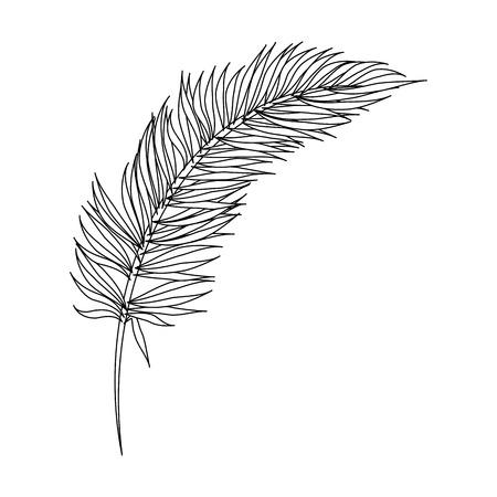 Tropisch vector de illustratieontwerp van het palmbladpictogram