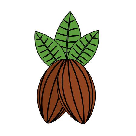 Granos de cacao y hojas fruta comida saludable ilustración vectorial Foto de archivo - 92282566