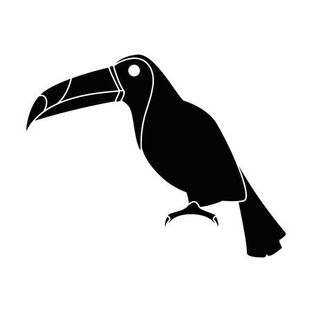 toucan exotic bird icon vector illustration design