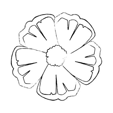 exotic and tropical flower vector illustration design Çizim