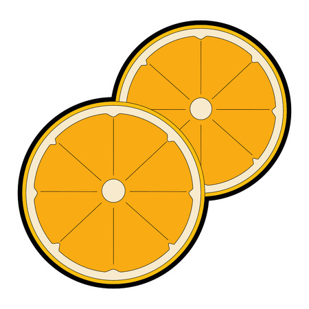 Orange citrus fruit slice vector illustration design