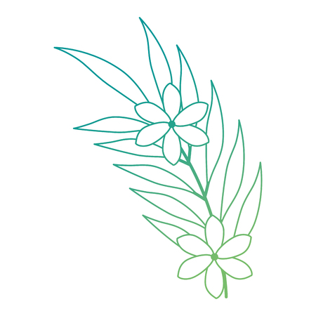 exotic and tropical flower vector illustration design Çizim