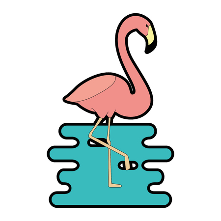 exotic bird flamingo with water vector illustration design