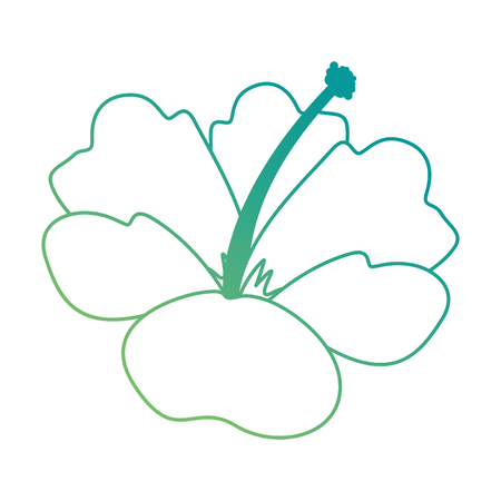 이국적인 열 대 꽃 벡터 일러스트 디자인 스톡 콘텐츠 - 92283145