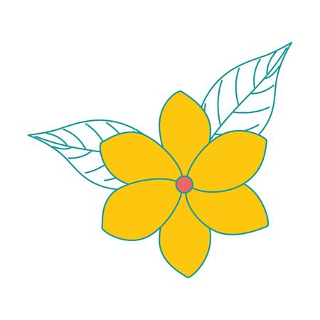 孤立したエキゾチックで熱帯の花ベクトルイラストデザイン  イラスト・ベクター素材