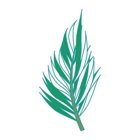 A tropical palm leaf icon vector illustration design