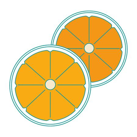 orange citrus fruit slice vector illustration design