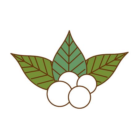 Christmas leafs decorative frame vector illustration design. Ilustração