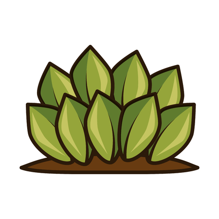plants cultivated isolated icon vector illustration design Illustration