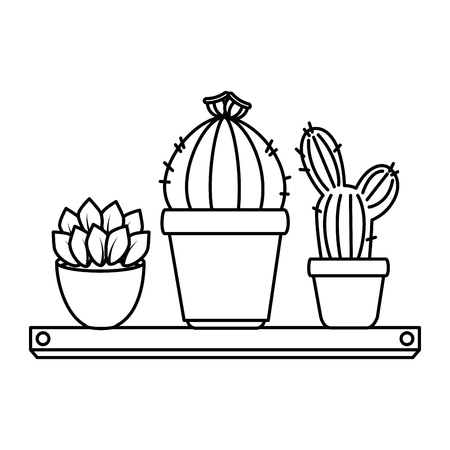 Pots with desert plants in shelf vector illustration design.