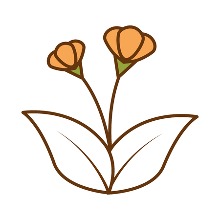 Orange flower icon illustration design.