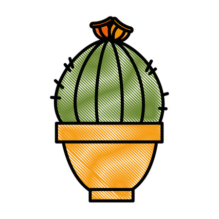 Pot with desert plant vector illustration design. Çizim