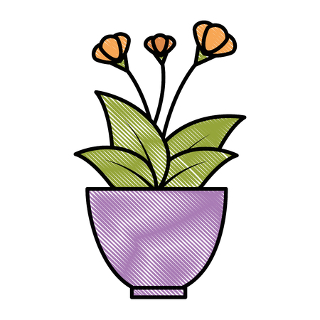 House plant in pot vector illustration design.