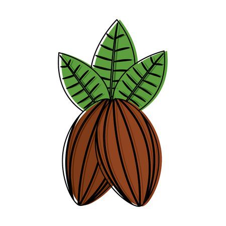 カカオフルーツチョコレートアイコンイメージイラストデザイン。
