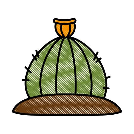 Cactus desert isolated icon illustration design.
